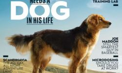 There's a Mutt on Our Cover. Here's Why